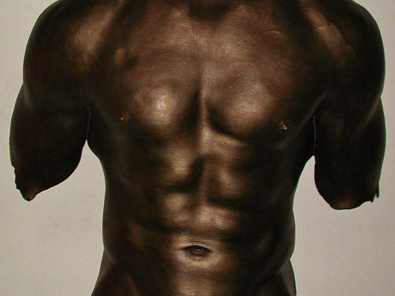 Male torso Casting Ontario